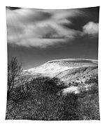Fan Fawr Brecon Beacons 1 Mono Tapestry