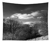 Fan Fawr Brecon Beacons 2 Mono Tapestry