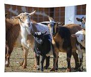 Fancy Goats Tapestry