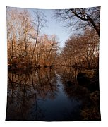 Far Mill River Reflects Tapestry