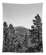Far Side Of The Mountain Tapestry