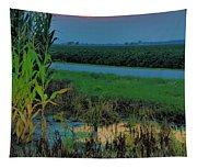 Farm Sunset Tapestry