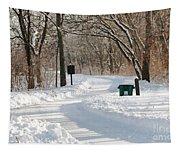 Farnsworth Park Path Tapestry