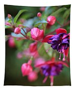Favorite Fuchsia Tapestry