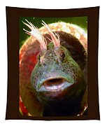 Feather Blenny - A Fish  Tapestry