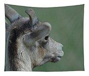 Female Bighorn Tapestry