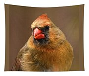 Female Cardinal Tapestry