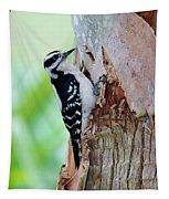 Female Downy Woodpecker Tapestry
