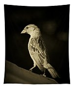 Female House Finch Tapestry