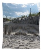 Fenced Dune Tapestry