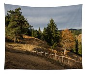 Fenced In Warm Autumn Light Tapestry