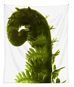 Fern Curve Tapestry
