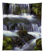 Fern Falls - 31 Tapestry