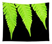 Fern Isolated On Black Background Tapestry