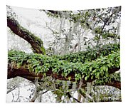 Resurrection Fern On The Limbs Tapestry