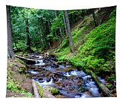 Ferns Dancing By The Creek Tapestry