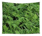 D3b6327-ferns In Sonoma Tapestry