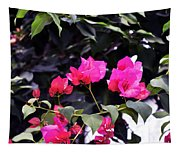 Fernwood Botanical Garden Bougainvillea Niles Michigan Usa Tapestry