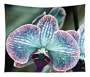 Festive Orchid Tapestry