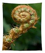 Fiddlehead Tapestry