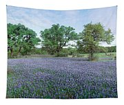 Field Of Bluebonnet Flowers, Texas, Usa Tapestry
