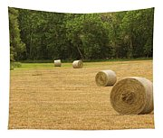 Field Of Freshly Baled Round Hay Bales Tapestry