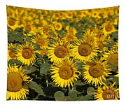 Field Of Sunflowers Tapestry