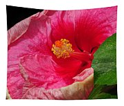 Fiery Hibiscus Tapestry