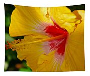'fifth Dimension' Hibiscus Tapestry