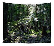 Filtered Sunlight Peace Tapestry