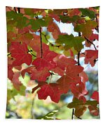 First Signs Of Fall  Tapestry