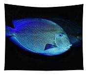 Fish Not For Dinner Tapestry