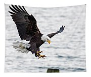 Flaps Down... Gear Down Tapestry