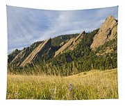 Flatirons With A Purple Wildflower  Tapestry