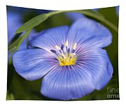 Flax Flower Tapestry