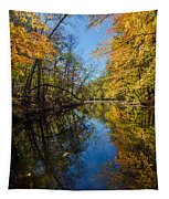 Fleeting Fall - 2  Tapestry