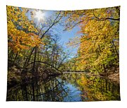 Fleeting Fall  Tapestry