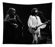 Fleetwood Mac In Amsterdam 1977 Tapestry