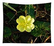 Fleur Jaune Couverte De Rosee Tapestry