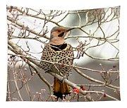 Flicker - Alabama State Bird - Attention Tapestry