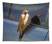 Yellow Shafted Northern Flicker Hanging Around Tapestry