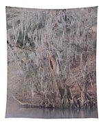 Flint River 2 Tapestry