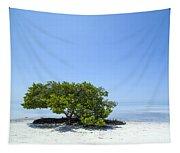 Florida Keys Lonely Tree Tapestry