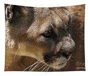 Florida Panther Tapestry