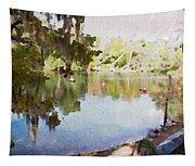 Florida Springs Waiting Tapestry