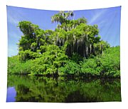 Florida Swamps Tapestry