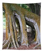 Florida Trees Tapestry