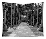 Florida Walkway Black And White Tapestry