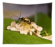 Flower Beetle Tapestry