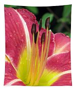 Flower Garden 02 Tapestry